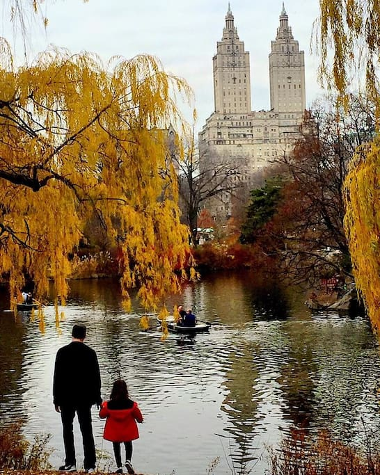 The Lake in beautiful Central Park. One of the many things to see and do in the park! Photo by @newyorkcitykopp on Instagram
