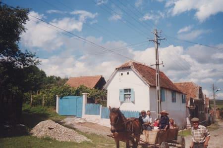 Oasen Paneel airbnb săliște sublets term rentals rooms for rent