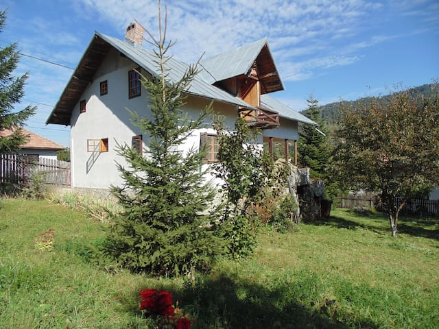 Small cottage in Doftana Valley - Teșila - Zomerhuis/Cottage