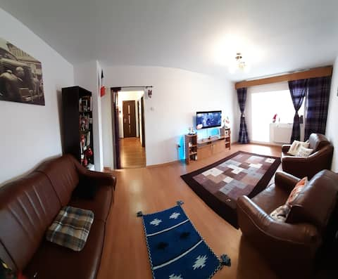 Highly Satisfactory Apartment in Tecuci