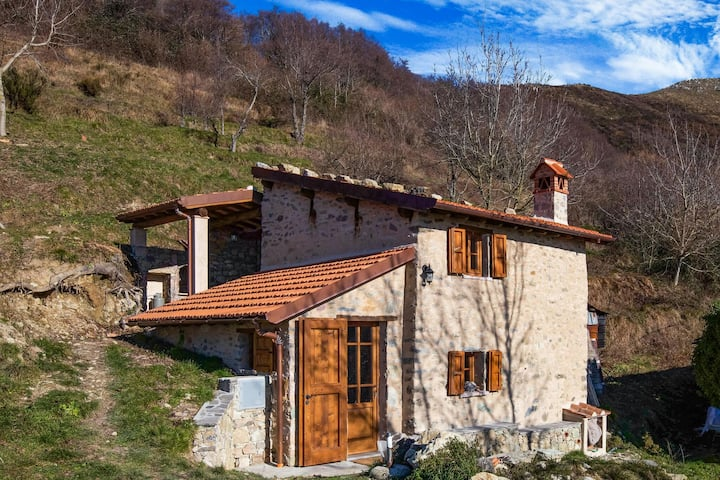 Cosy Holiday Home in Metato with Swimming Pool