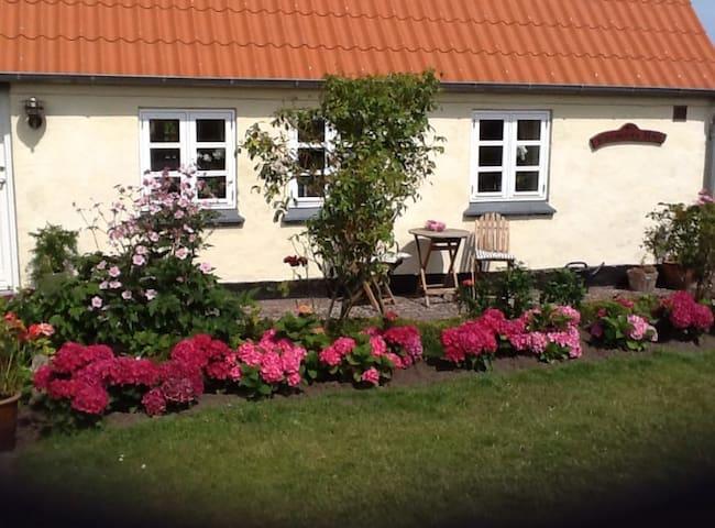 Min Farmors Hus På Samsø - Samsø