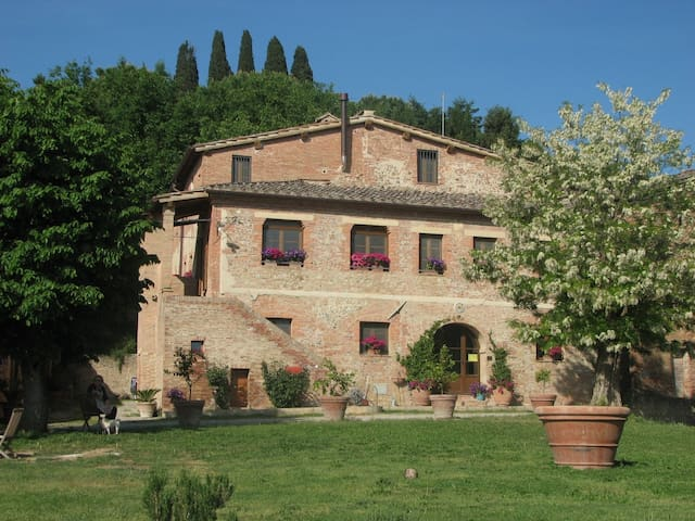 Apartment in Tuscan farm house. - Castelnuovo Berardenga