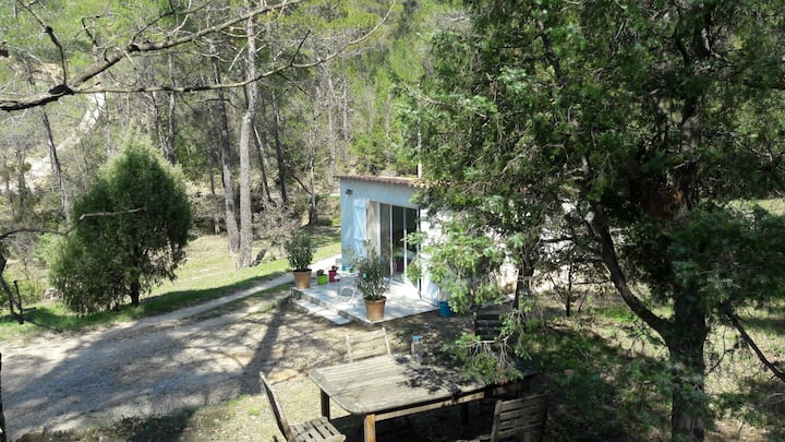 The Cabanon in Provence
