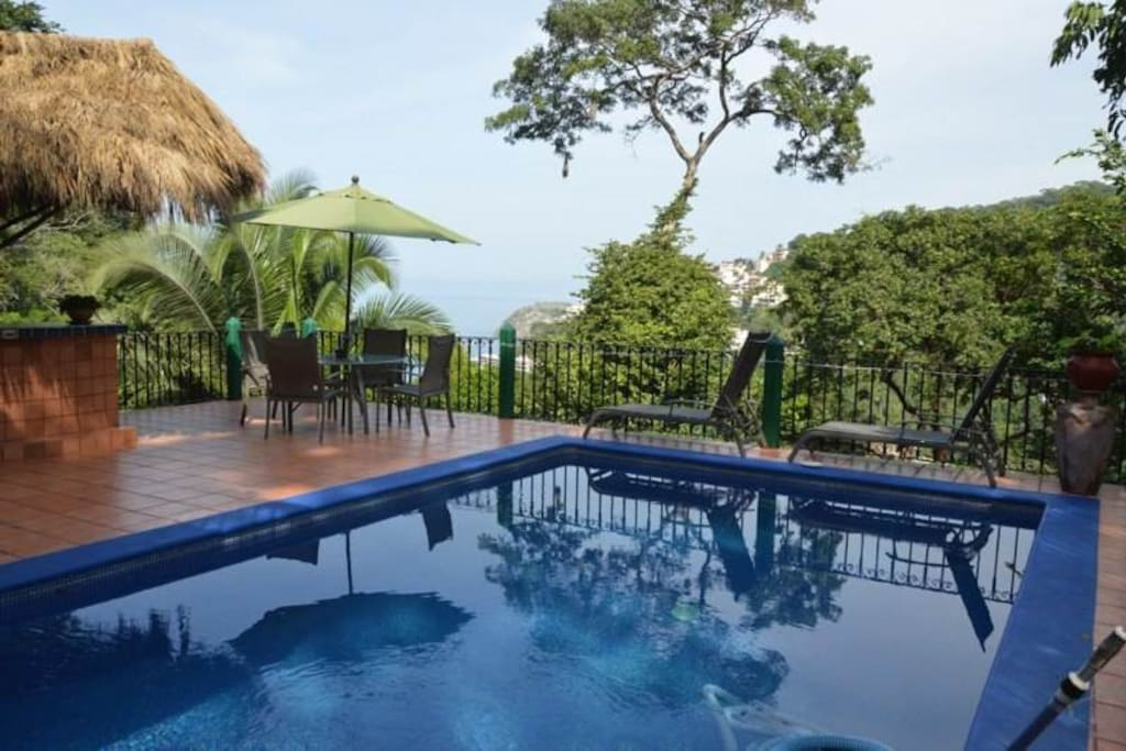 pool and patio with palapa bar