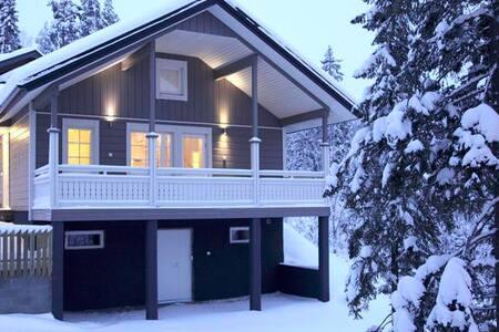 Villa Sidori 3 - Jämsä - Casa