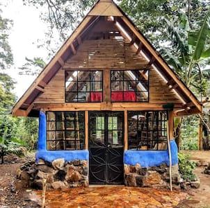 Unique Cob Cottage in the Avocado Forest