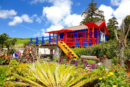 Casa Banana colorful cabin Azores