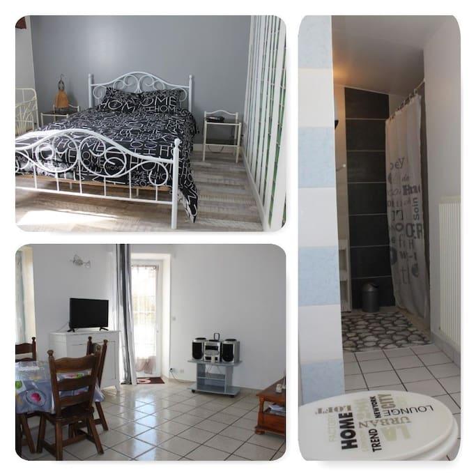 grande chambre avec placard, salle d'eau avec douche italienne, wc, grand salon.