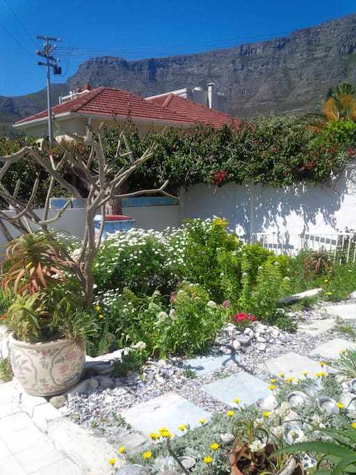 Beautiful garden with unique artistic touches, overlooked by the famous Table Mountain.