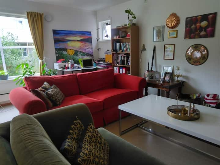 Koselig student rom leilighet