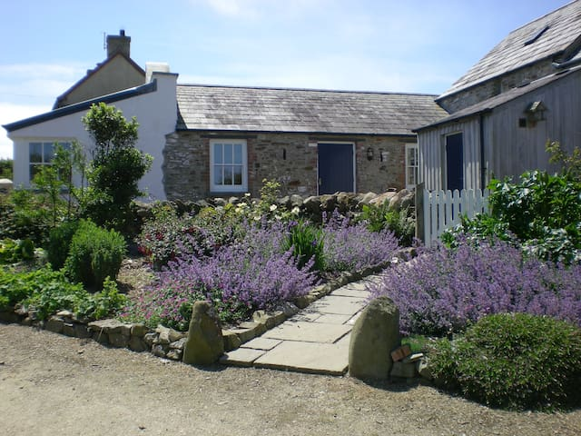 Pretty welsh cottage close to Abereiddy beach