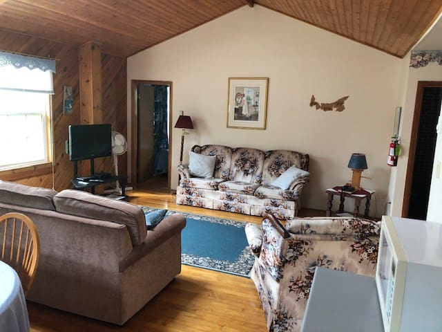 Large living room equipped with comfortable sofa bed that sleeps two people, cable t.v, DVD player, phone and free wi-fi.