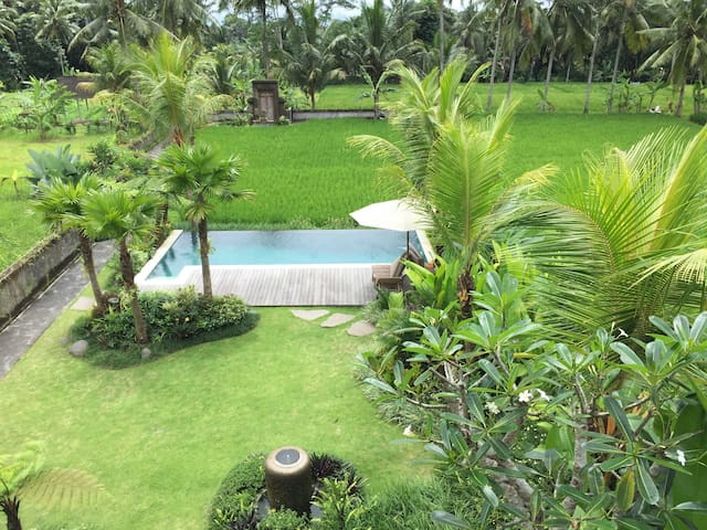 The Suris Ubud ,serenity and nature