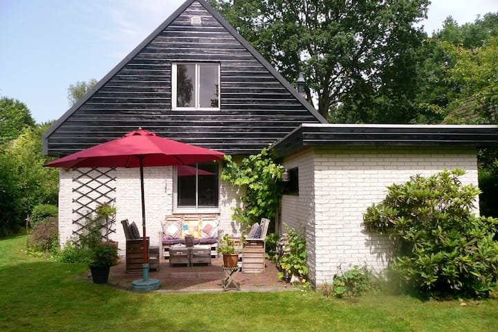 Detached Holiday Home in Friesland near the Forest