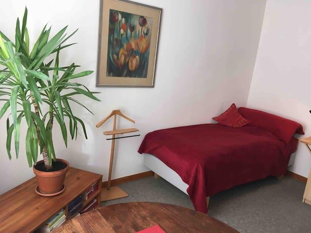 Ruhiges, stadtnahes Zimmer mit Gästebad