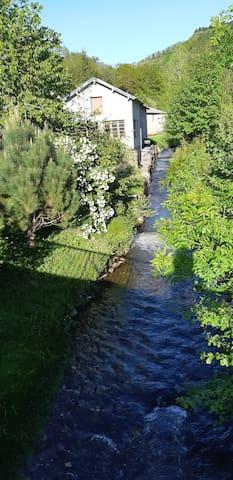 le Berlou affluent du Gijou qui traverse le village