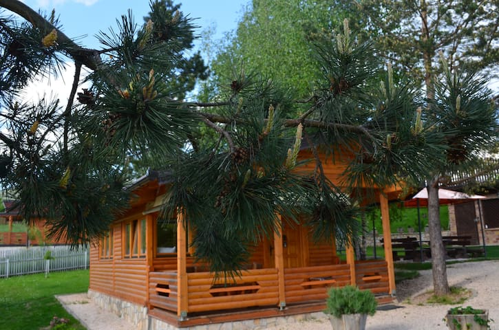 Beautiful cabine in nature, close to City Center