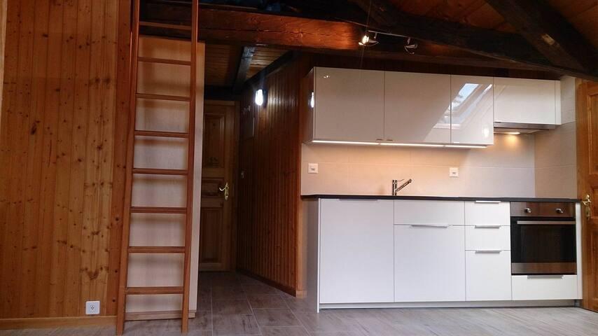 Studio meublé, rénové dans les combles, p. de parc