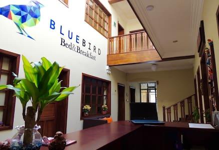 Bluebird Bed&Breakfast Cuenca - Cuenca - Pousada