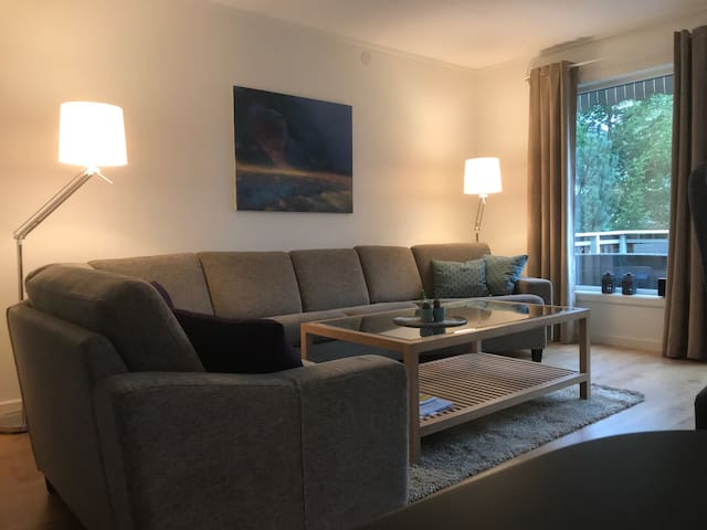 Nice and cozy apartment  -  close to city centre