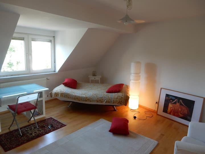 Bonn Südstadt Wohnung