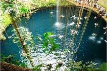 Beautiful Cenotes scattered all over the Riviera Maya.