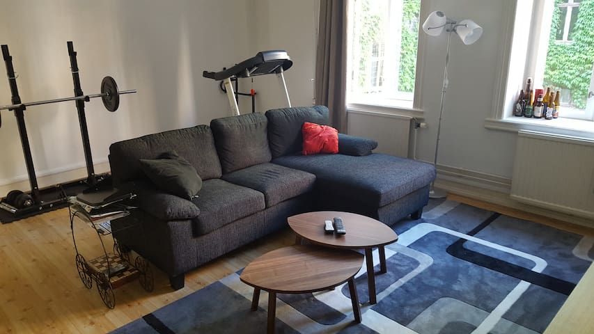 Central and spacious flat in the heart of Malmö - Malmö - Appartement