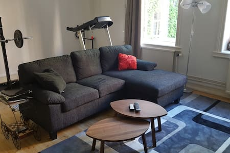 Central and spacious flat in the heart of Malmö - Malmö