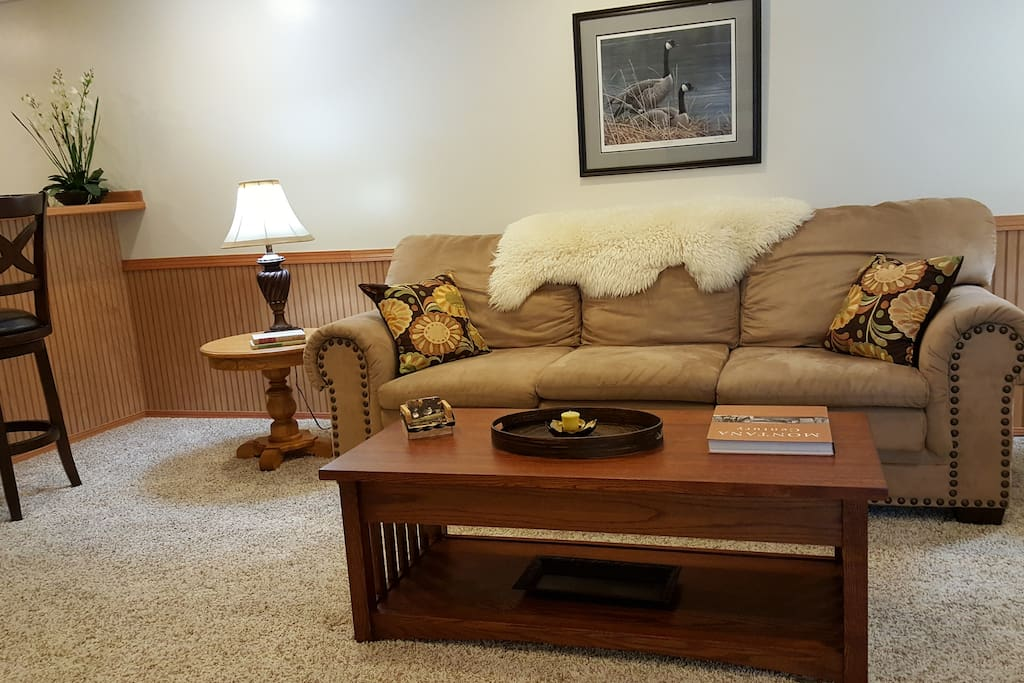 Comfortable couch-living room area