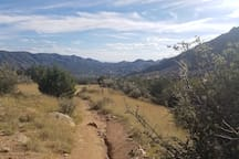Hiking/biking trails in the nearby foothills of the Sandia Mountains