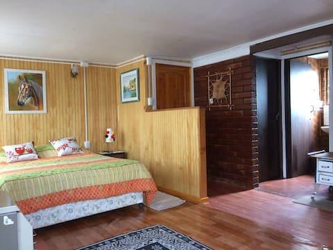 Loft Mono - Ambiente en el Centro de Lonquimay