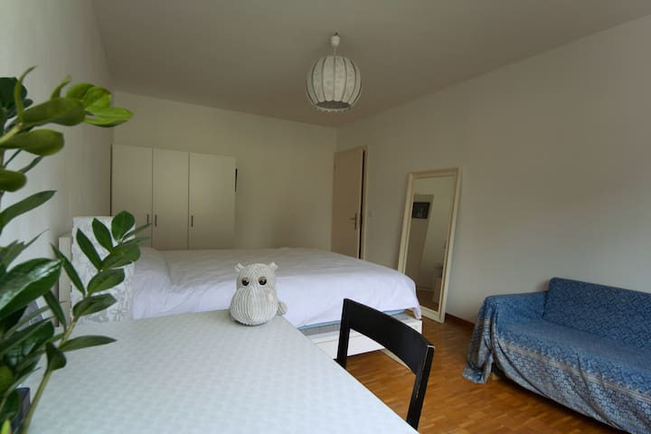 Spacious, comfy flat 10' to center - Zurych - Apartament