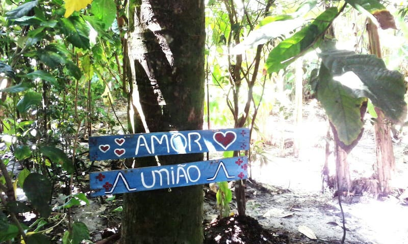 CASA DA PAZ  - ILHA DE BOIPEBA - VEGETAÇÃO NATIVA - Ilha de Boipeba - Casa
