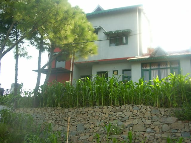 Mukul Deva's home in Jagjitnagar near Kasauli town - Jagjit Nagar - House