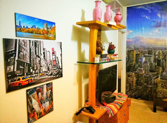 Private room in an NYC themed apt for dog lovers!