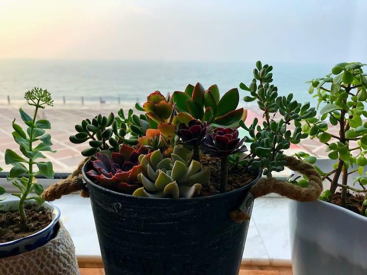 石老人无敌海景 观日听潮 门前尽享海钓 免费爱心早餐