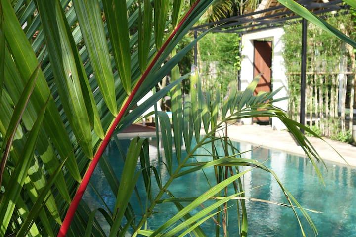 Butterfly Villa (Modern Bamboo)