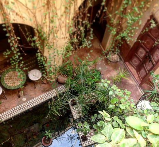 Riad authentique medina souk