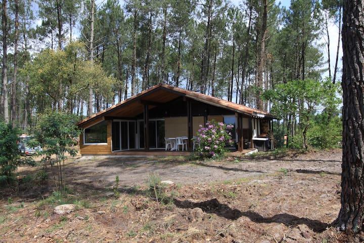 Chalet Landais - Léon - Casa de férias
