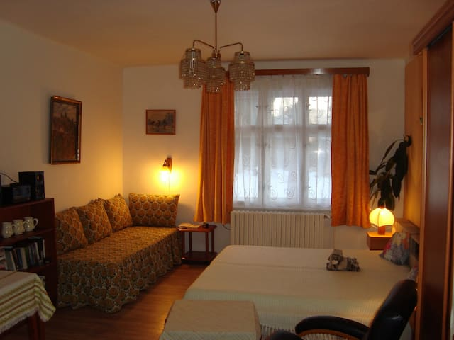 Large room (+kitchenette) near the Prague Castle