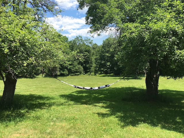 Charming Catskill Home - Ellenville - House