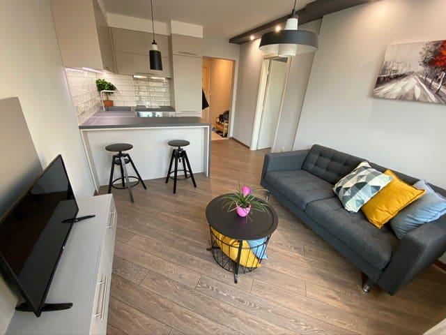 LUX 1BR/1BA City Center Apartment