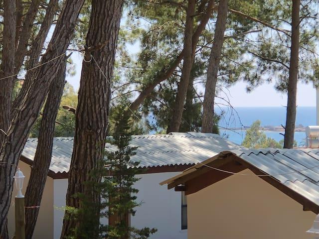 Mutlu Tatil Koyu-Single Bedroom Private Bungalow