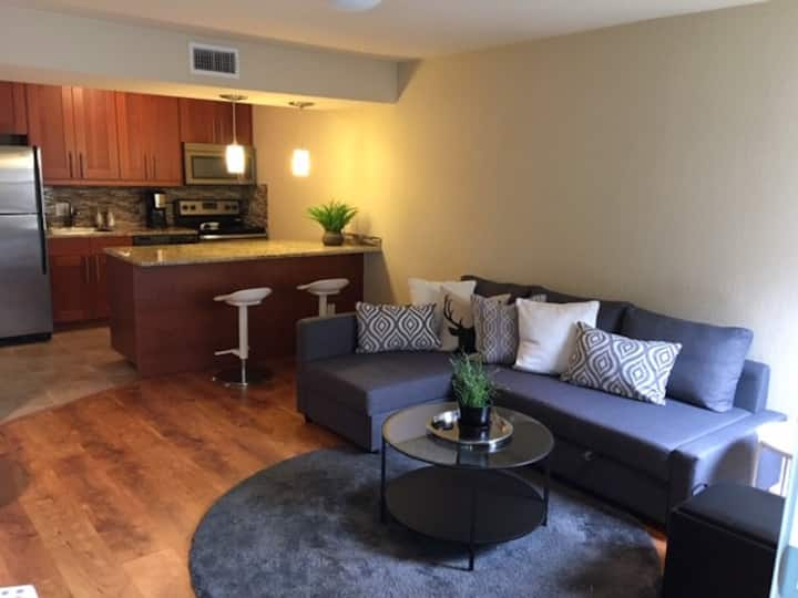 Classy, Cozy Updated Unit with Pool and Fitness