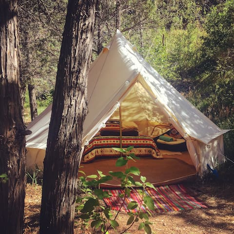 Creekside Glamping at Old Gem Farm