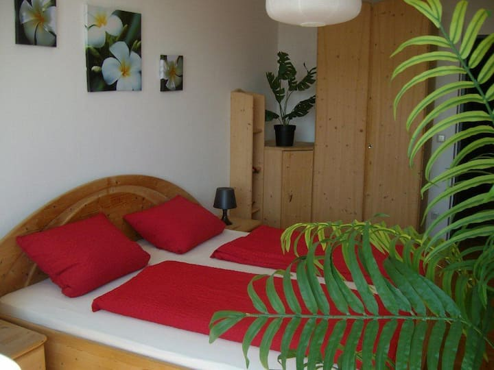 double room 4 you in salzburg with roof terrace