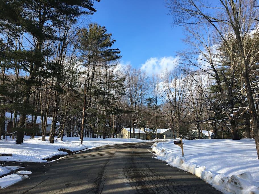 A view along Park Drive