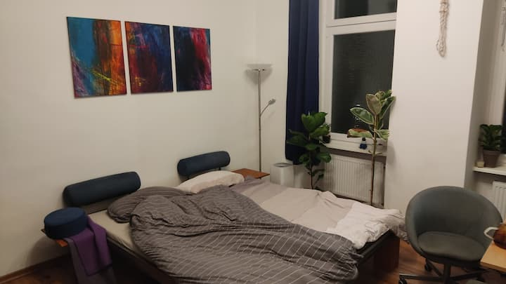 Huge, centrally located room in shared apartment