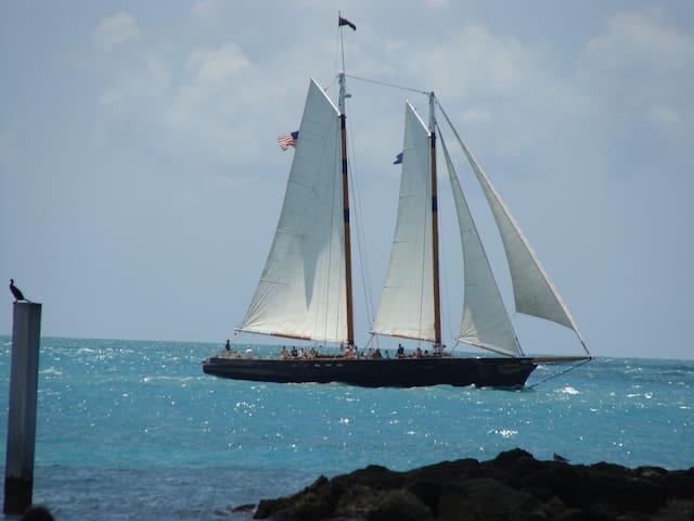 Caribbean-like waters